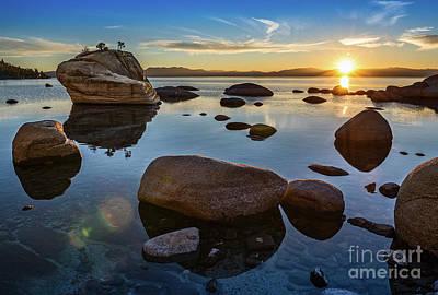 Bonsai Rock Photograph - Bonsai Star by Jamie Pham