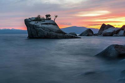 Photograph - Bonsai Summer by Janet Kopper