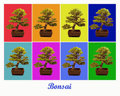 Photograph - Bonsai X8 Titled by Lou Ford