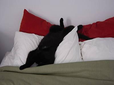 Boo Havin A Nap Art Print by Marie Dunkley