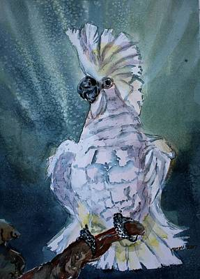 Cockatoo Painting - Boo The Umbrella Cockatoo by Mindy Newman