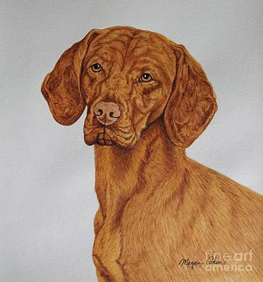 Pup Painting - Boomer The Vizsla by Megan Cohen