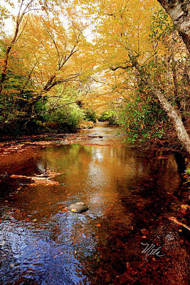 Print featuring the photograph Boone Fork Stream by Meta Gatschenberger