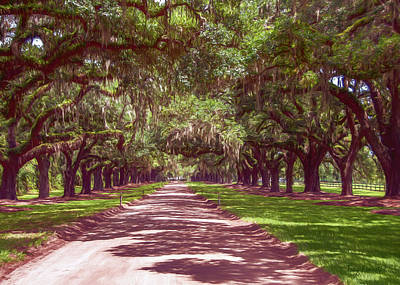 Photograph - Boone Hall Corridor by Trey Foerster