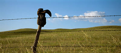Cowboy Boots Photograph - Boot And Barbed Wire Fence Ne by Panoramic Images