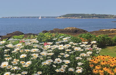 Photograph - Boothbay Harbor Maine Ocean Point by John Burk