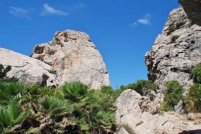 Photograph - Boquer Valley In Majorca by David Fowler
