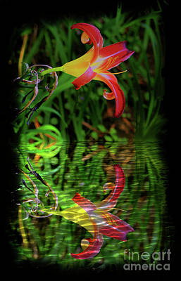 Photograph - Boquete Lily Reflection by Al Bourassa