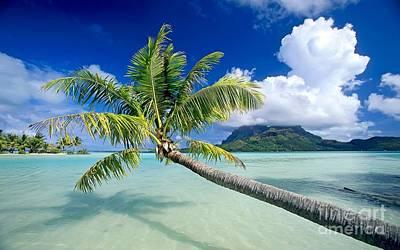 Pyrography Photograph - Bora Bora Beach by Andy Maryanto