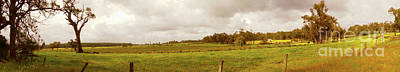 Photograph - Boranup Pasture Panorama by Cassandra Buckley