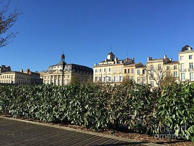 Photograph - Bordeaux Beauty by Barbara Plattenburg