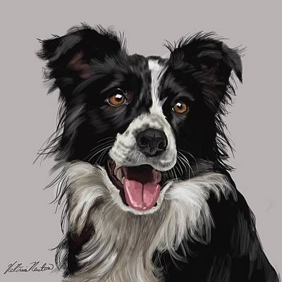 Border Collie Digital Art - Border Collie All Smiles by Victoria Newton