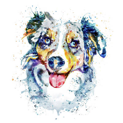 Watercolor Pet Portraits Painting - Border Collie  by Marian Voicu