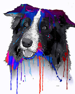 Digital Art - Border Collie by Marlene Watson
