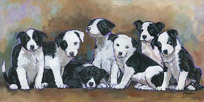 Border Collie Puppies Original by Nadi Spencer