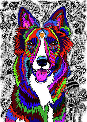 Drawing - Border Collie by ZileArt