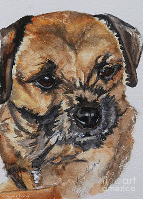 Painting - Border Terrier by Susan Herber