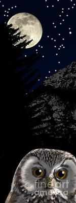 Animals Paintings - Boreal owl or Tengmalms owl - Aegolius funereus - Nationalpark Gesaeuse Xeis by Urft Valley Art \ Matt J G  Maassen-Pohlen
