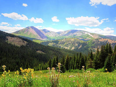 Photograph - Boreas Pass Colorado by Lanita Williams