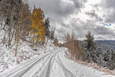 Photograph - Boreas Pass Tracks by Stephen Johnson