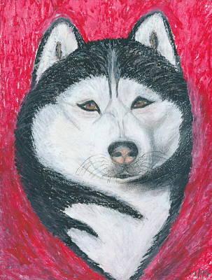 Siberian Husky Drawing - Boris The Siberian Husky by Ania M Milo