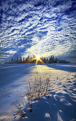 Print featuring the photograph Born As We Are by Phil Koch