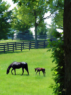 Keeneland Photograph - Born In Bluegrass 2 by Sam Davis Johnson