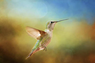 Photograph - Born To Fly by Lynn Bauer