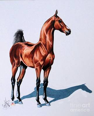 Painting - Born To Rage Saddlebred Colt by Cheryl Poland