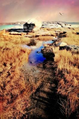 Photograph - Borsisti Del Mare by Diana Angstadt