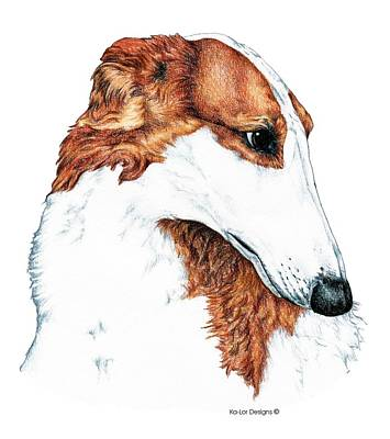 Wolfhound Drawing - Borzoi by Kathleen Sepulveda
