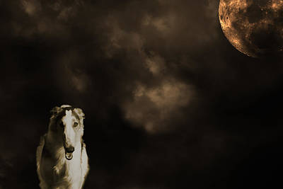 Art Print featuring the photograph Borzoi Wolf Hound And Full Moon by Christian Lagereek