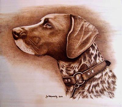 Boscoe Art Print by Jo Schwartz