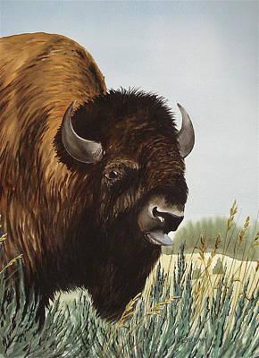 Boss Bull Art Print by Bud Bullivant