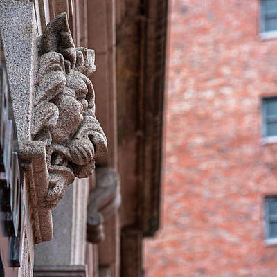 Photograph - Boston Architectural Detail Boston Ma Lion In Stone by Toby McGuire