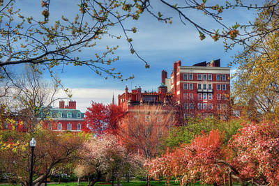 Photograph - Boston Common In Spring by Joann Vitali
