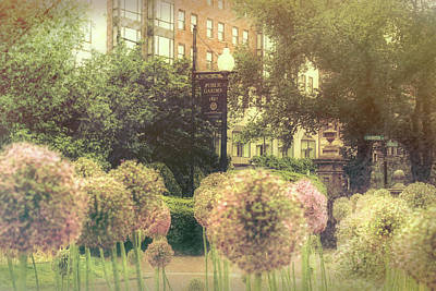 Photograph - Boston Public Garden In Spring - Alliums by Joann Vitali