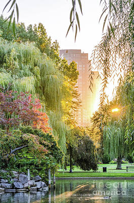 Photograph - Boston Public Garden Sunrise by Mike Ste Marie