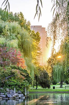 Boston Public Garden Sunrise Art Print
