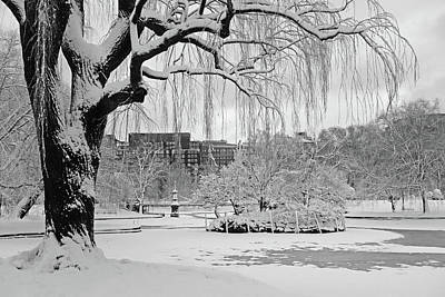 Photograph - Boston Public Garden Tree Covered In Snow Boston Ma Black And White by Toby McGuire