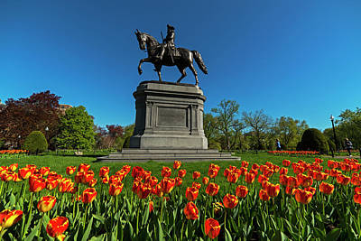 Photograph - Boston Public Garden Tulips Boston Ma by Toby McGuire