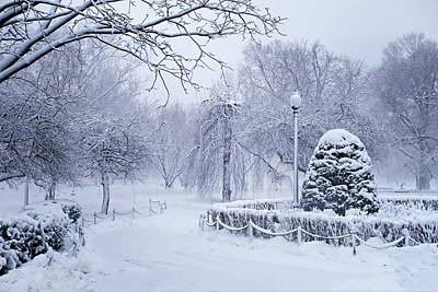 Photograph - Boston Public Garden Winter Wonderland Boston Ma by Toby McGuire