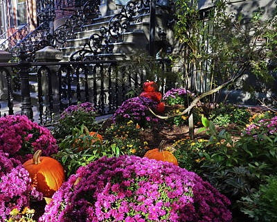 Photograph - Boston South End Autumn Garden Boston Ma by Toby McGuire