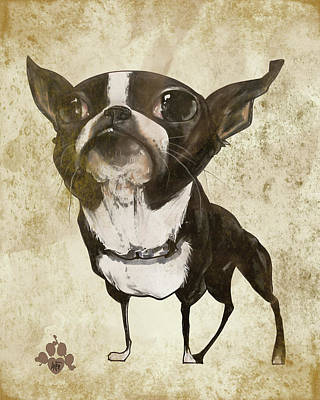 Cities Drawings - Boston Terrier - Antique by John LaFree