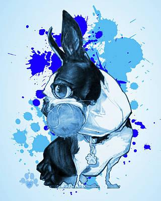 Boston Terrier - Blue Paint Splatter Art Print