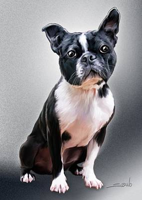 Painting - Boston Terrier By Spano by Michael Spano