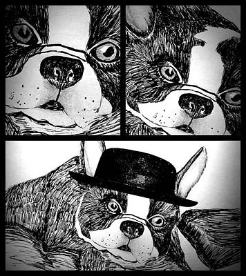 Drawing - Boston Terrier Collage by Maria Urso