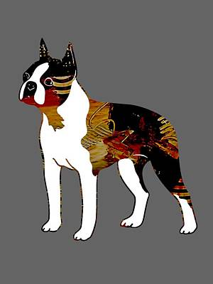 Pets Mixed Media - Boston Terrier Collection by Marvin Blaine