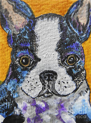 Painting - Boston Terrier Dog Painting by Ella Kaye Dickey