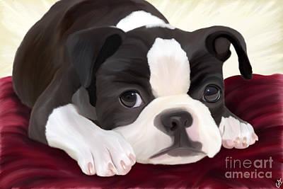 Breed Digital Art - Boston Terrier by Galambosi Tamas